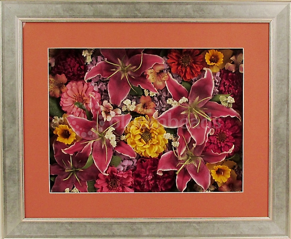 Preserved Garden Flowers in Frame with Front Mat 16