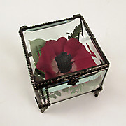 Mini Antique Preserved Flower box